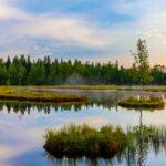 Jezero Laka - nejmenší a nejvýše položené šumavské jezero